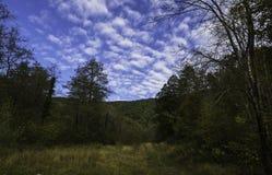 秋天草甸,克罗地亚 库存照片