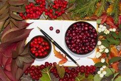 秋天莓果、蔓越桔和花揪在笔记本 库存照片