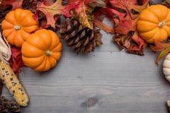 秋天菜、南瓜和叶子在木背景 免版税库存照片