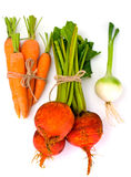 秋天菜甜菜、葱和红萝卜 免版税库存图片