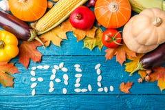 秋天菜,从南瓜籽的词,与题字的地方 库存照片