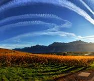 秋天葡萄园全景在瑞士 库存照片