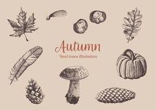 秋天葡萄酒手拉的收藏 叶子、蘑菇、南瓜、锥体、羽毛和栗子的例证 玻色子 皇族释放例证