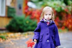 秋天蓝色聪慧的外套女孩一点 免版税库存图片