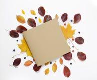 秋天蓝色边界框架陆军少校的肩章天空 充满活力的红色和黄色叶子和卡片的创造性的构成文本的在白色背景 平的位置 图库摄影