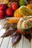 秋天蔬菜和水果 图库摄影