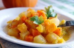 秋天蔬菜炖肉被蒸的蔬菜 免版税库存照片