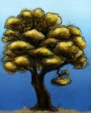 秋天被画的现有量结构树 免版税库存图片