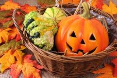 秋天装饰微型南瓜篮子  免版税库存图片