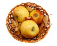 秋天装饰用在篮子的苹果和叶子 免版税库存照片