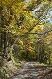 秋天西方的弗吉尼亚 库存图片