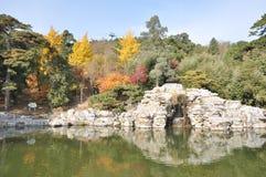 秋天视图在一个巨大的庭院里 免版税库存照片