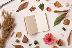 秋天设置与笔记本在中心 库存照片