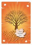 秋天设计橙树 库存例证