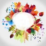 秋天设计花卉绘画水彩 免版税库存照片