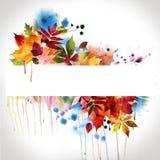 秋天设计花卉绘画水彩 库存图片