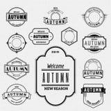 秋天证章商标和标签其中任一的用途 免版税图库摄影
