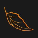 秋天象 秋天叶子 自然标志在黑背景隔绝的传染媒介收藏 光滑的形状 简单的平的样式颜色 Vecto 库存图片
