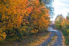 秋天路在一多云10月天 库存照片
