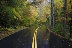 秋天路在大烟山,田纳西,美国 免版税图库摄影