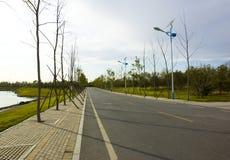 秋天路径 免版税库存照片