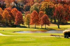 秋天路线叶子高尔夫球 库存图片