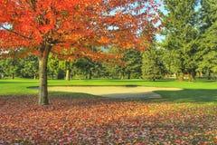 秋天路线秋天高尔夫球 图库摄影