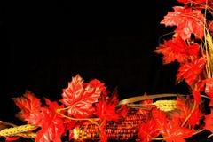 秋天边界 库存照片