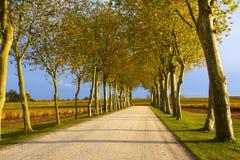秋天运输路线 图库摄影