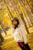 秋天逗人喜爱的美丽的女孩 库存图片