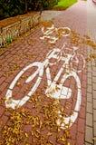 秋天都市自行车的跟踪 库存图片