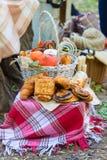 秋天野餐在公园 免版税库存照片