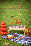 秋天野餐在公园 免版税图库摄影