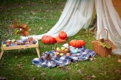 秋天野餐在公园 免版税库存图片