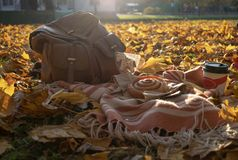 秋天野餐平的位置 免版税图库摄影