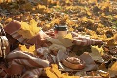 秋天野餐平的位置 库存图片