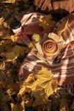 秋天野餐平的位置 库存照片