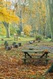 秋天野餐站点 库存图片