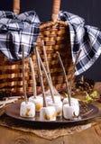 秋天野餐食物概念敬酒了在棍子木背景板材锥体柳条野餐篮子毯子垂直的Marshmellow 免版税图库摄影