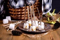 秋天野餐食物概念敬酒了在棍子木背景板材锥体柳条野餐篮子毯子的Marshmellow 免版税库存照片
