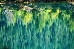秋天金子绿色湖反映结构树黄色 免版税库存照片