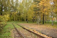秋天铁路 库存照片