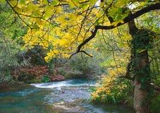 秋天银行醇厚的河 库存图片