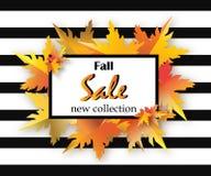 秋天销售与字法,桔子的飞行物模板在黑白色背景离开 秋天促进 海报,横幅,卡片 免版税库存图片