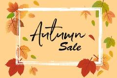 秋天销售与秋天叶子和框架的传染媒介横幅,使用桃子背景 皇族释放例证