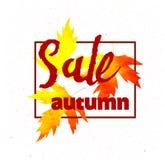 秋天销售书信设计 秋天叶子 标签,横幅模板 免版税库存照片