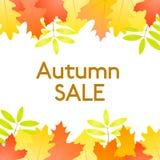 秋天销售-导航与秋叶的白色背景 免版税库存图片