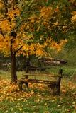 秋天长凳乡下 库存图片