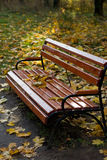 秋天长凳公园 免版税库存照片