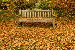 秋天长凳公园 库存图片